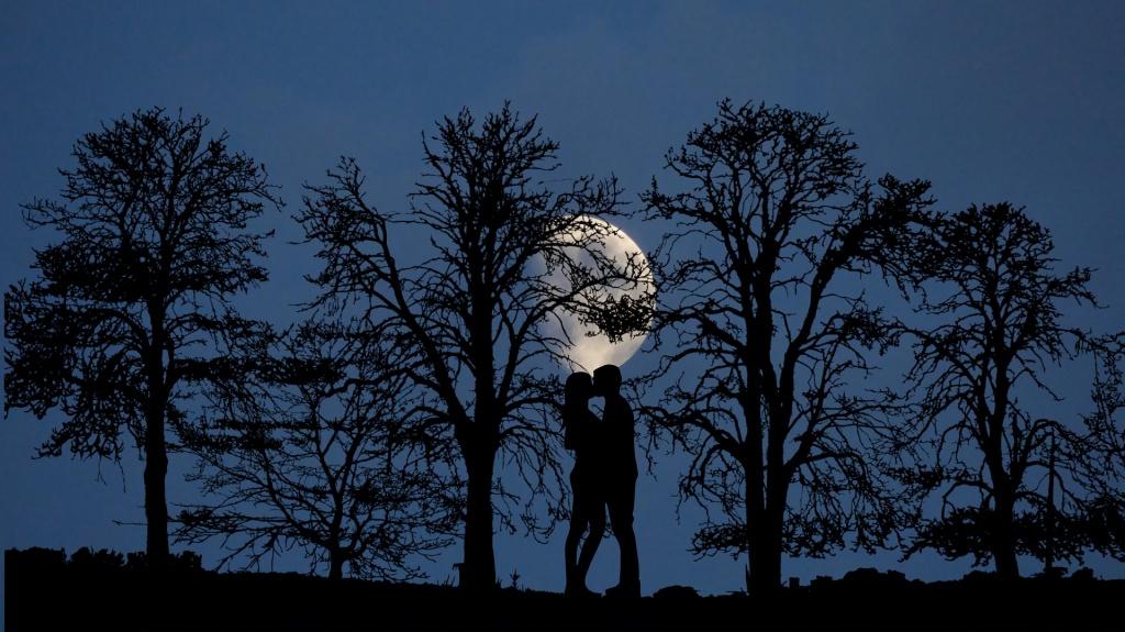"""Artigo """"Loucos por Amor"""", por Jussara Hadadd. Foto: Rene Rauschenberger"""